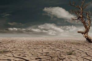 landscape desert 1024x682 1