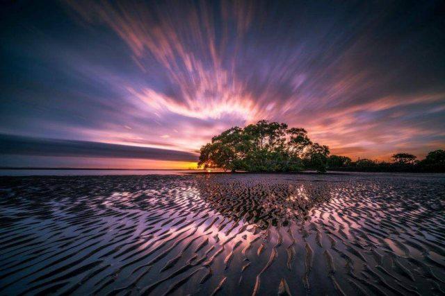 landsape beauty tide sunset tree 1024x682 1