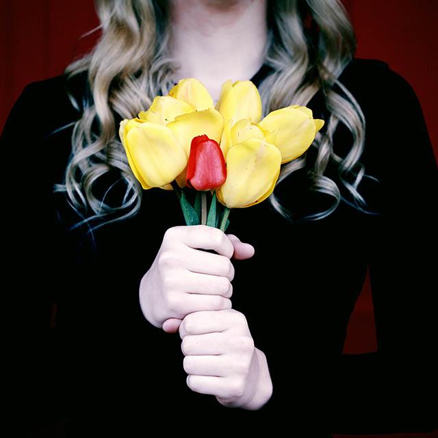 yellow-red-tulips_640